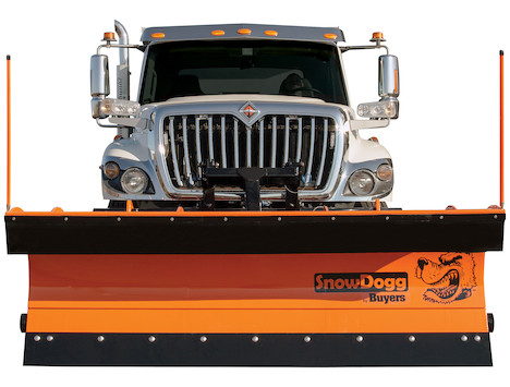 SnowDogg™ 36 Inch Trip Edge Steel Municipal Plow Assembly